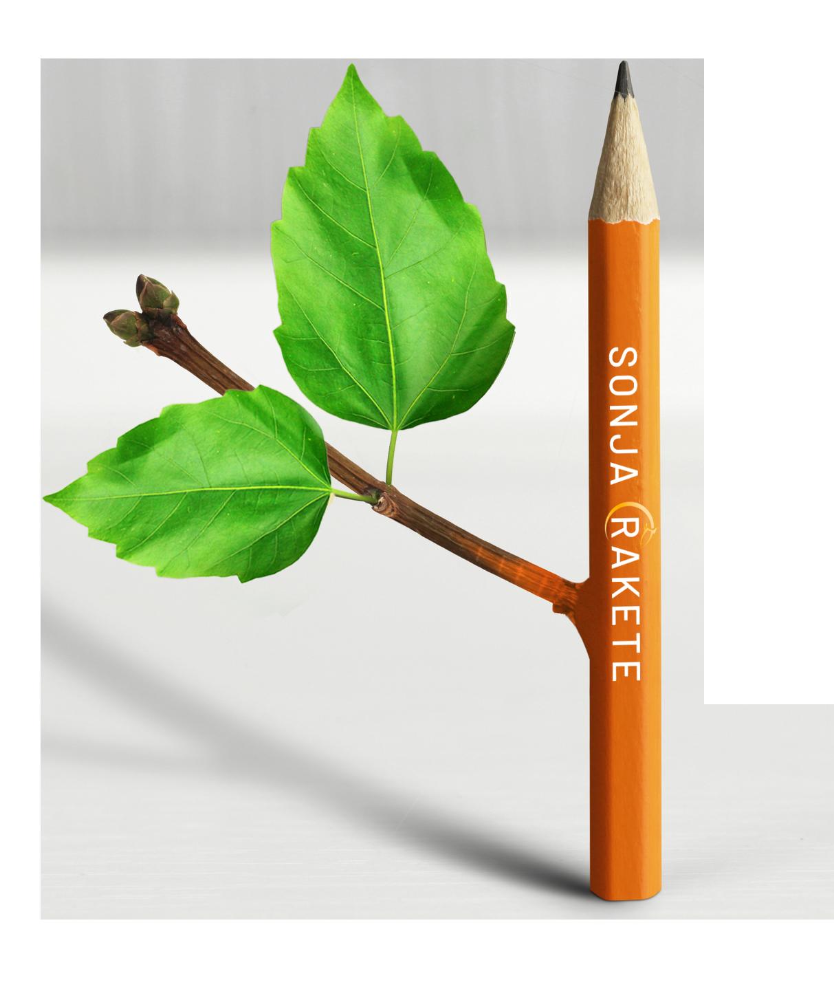Bleistift mit Blättern symbolisiert Ideen