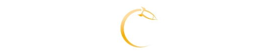 Sonja Rakete Consulting Logo